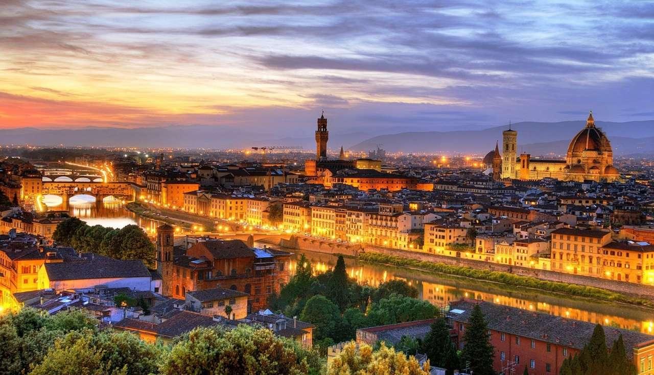 Leonardo da vinci Florence 1