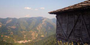 Пансионни училища в България