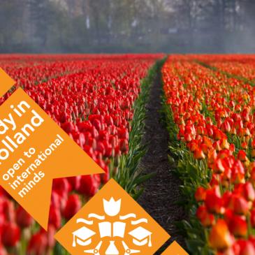 10 причини да завършите университет в Холандия