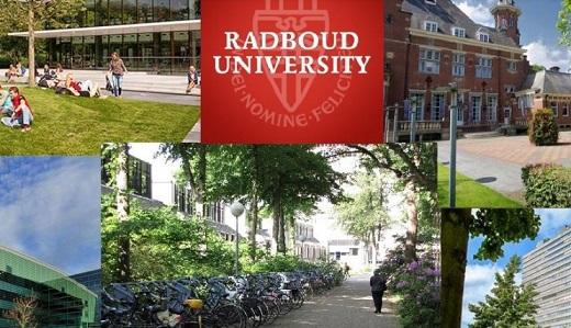колеж-в-нидерландия